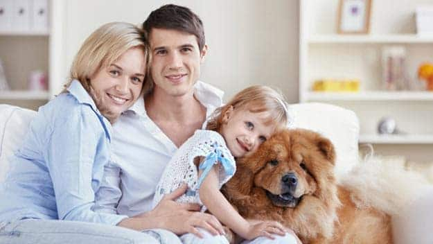 Wills & Trusts dog-young-family Direct Wills Brighton and Hove